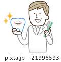 ベクター 歯磨き 歯のイラスト 21998593