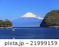富士山 戸田港 海の写真 21999159