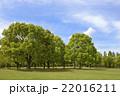 新緑の花博記念公園 22016211