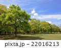 新緑の花博記念公園 22016213