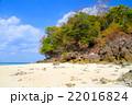 ビーチ 浜辺 きれいの写真 22016824