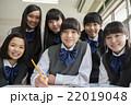 勉強する女子生徒 22019048