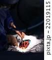 手術(術野) 22019115