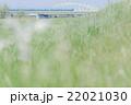川を渡る電車 22021030
