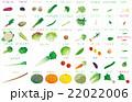 野菜いろいろ 22022006