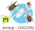 夏休み 昆虫採集 22022262