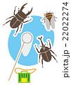 昆虫採集 22022274
