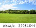 青空と雲と緑の広場 22031644