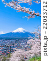 富士山 桜 春の写真 22033712