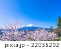 富士山 満開 桜の写真 22035202