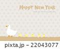 年賀状 鳥 アヒルのイラスト 22043077