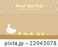 年賀状 鳥 アヒルのイラスト 22043078