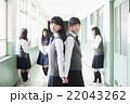 女子 中学生 高校生の写真 22043262