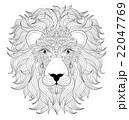 head of  lion  22047769