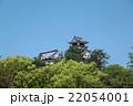 新緑と青空の高知城 22054001