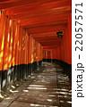 伏見稲荷大社 22057571