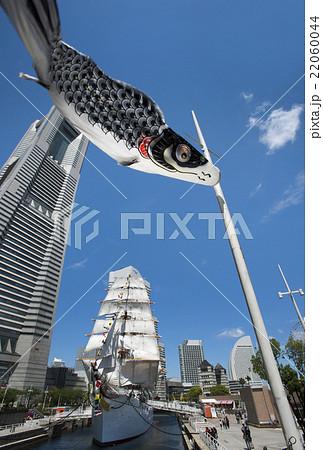 帆船日本丸の総帆展帆・満船飾と、青空を泳ぐ鯉のぼり 22060044