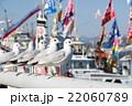 漁港のカモメ 22060789