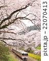 山北 御殿場線 桜の写真 22070413
