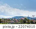 鯉のぼりと高尾山 22074010
