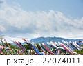 鯉のぼりと高尾山 22074011