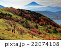 紅葉の大菩薩峠稜線から見る富士山 22074108