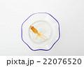 金魚  22076520