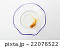 金魚  22076522