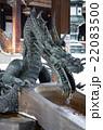 京都 東本願寺の境内 22083500