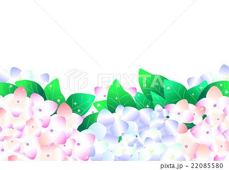 紫陽花 あじさい アジサイ 下 背景 横長 花 6月 梅雨のイラスト素材