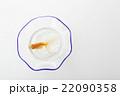 金魚  22090358