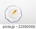 金魚   22090366