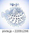 Graphic puffer fish 22091298