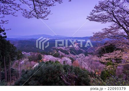 吉野桜の夜明け(花矢倉展望台から) 22093379