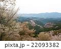 桜 吉野山 吉野桜の写真 22093382