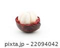 マンゴスチン パープル・マンゴスチン 果物の写真 22094042