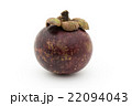 マンゴスチン パープル・マンゴスチン 果物の写真 22094043