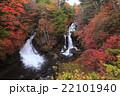 竜頭の滝 紅葉 滝の写真 22101940