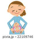 妊婦 赤ちゃん 胎児のイラスト 22109746