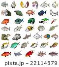 ユニークな魚のイラスト 22114379