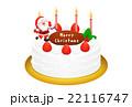 クリスマスケーキのリアルイラスト 22116747