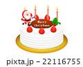 クリスマスケーキのリアルイラスト 22116755