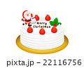 クリスマスケーキのリアルイラスト 22116756