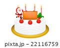 クリスマスケーキのリアルイラスト 22116759