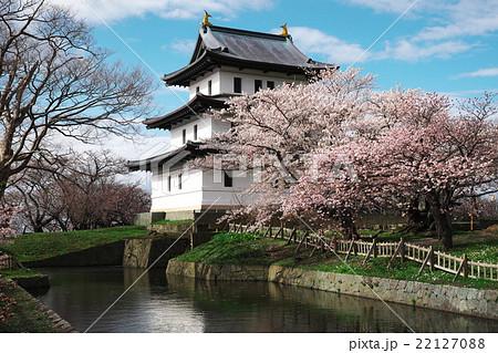 松前城と桜 22127088