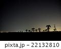 九十九里浜で見た、星と椰子の木 22132810