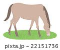 馬 22151736