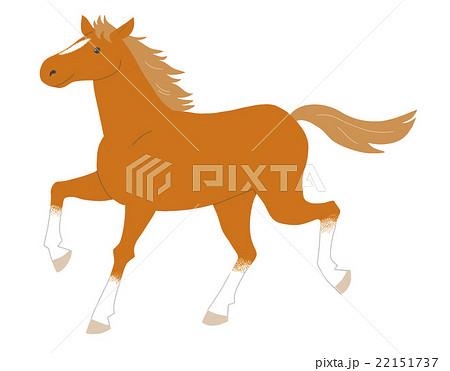 馬 22151737