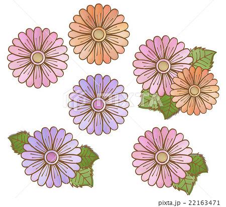 おしゃれな手描き風ペン画 水彩風 花のイラストカット セット素材 白背景 透過pngのイラスト素材