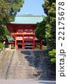 滋賀 近江神宮 22175678